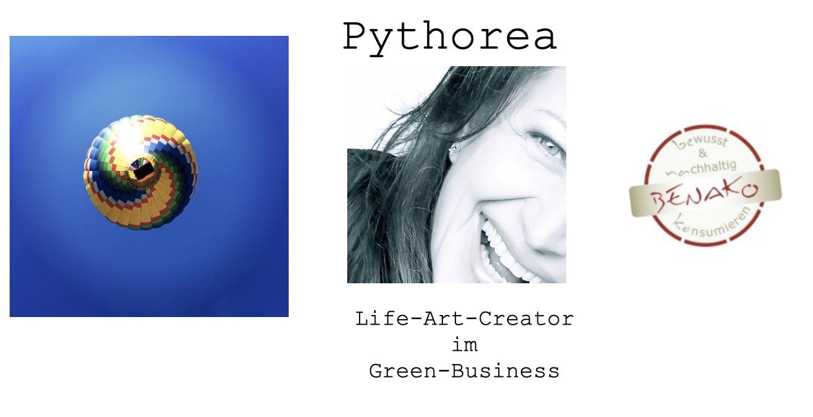 Life-Art-Creator Pythorea